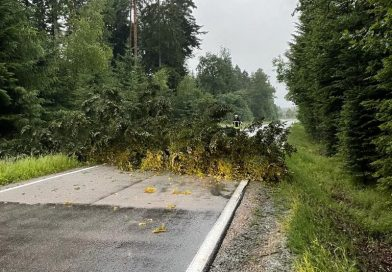 Unwetter – Baum über Fahrbahn